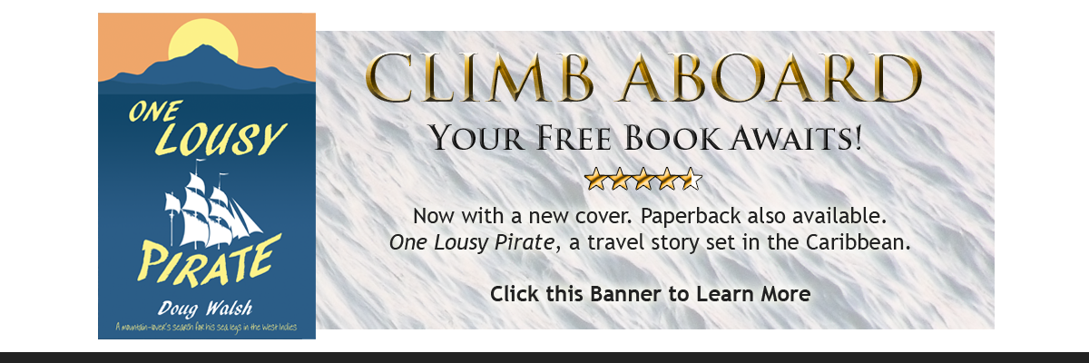 Book giveaway banner for One Lousy Pirate.
